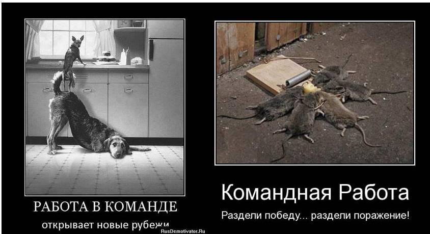 Юмористические картинки о строителях